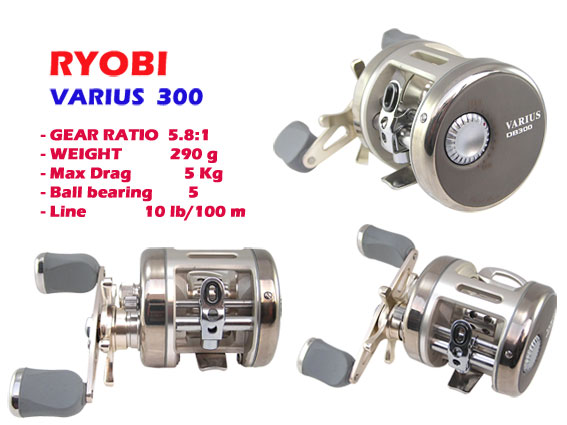 RYOBI  VARIUS  300