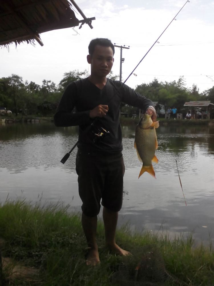 สนุกสนาน ตกปลา..หมึก ทะเลตราดส่งท้ายปี 2009