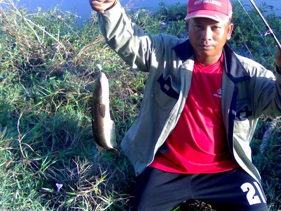 ตกปลาช่อน ณ เลาขวัญ จ.กาญจนบุรี 3