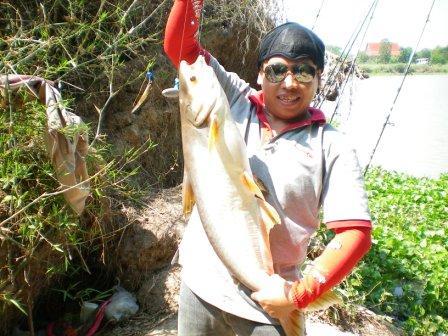 ตกปลา @ แม่นำ่น้อย