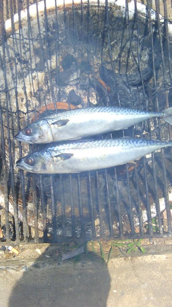 แกงไตปลาสูตรภาคกลางอ่างทองครับ
