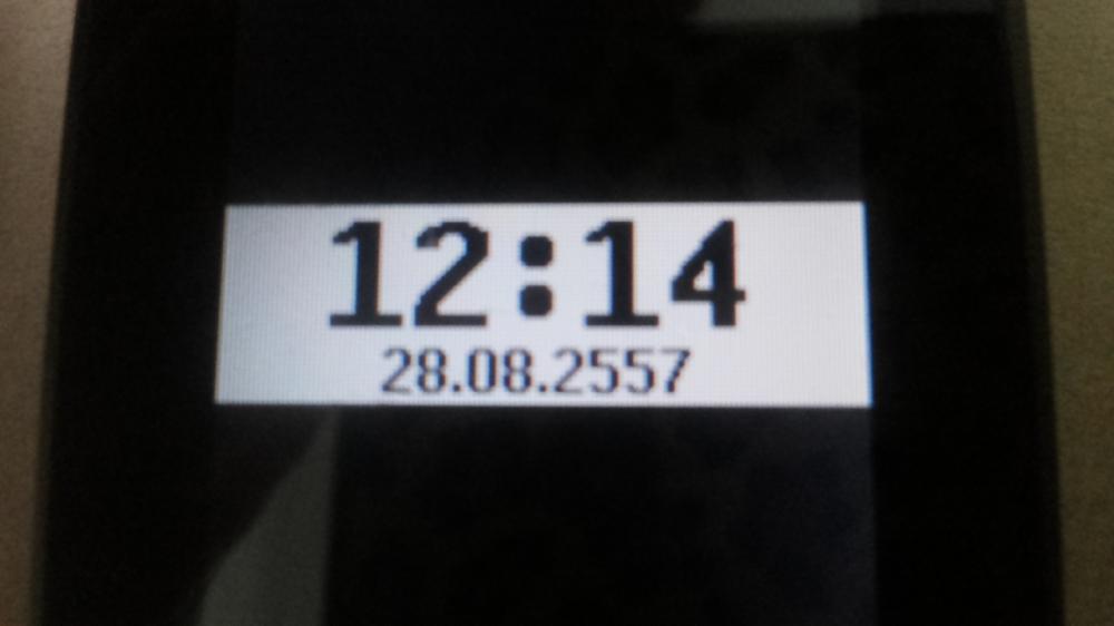 + แจกกบกระโดด 4.5 เซน 1 ตัว +