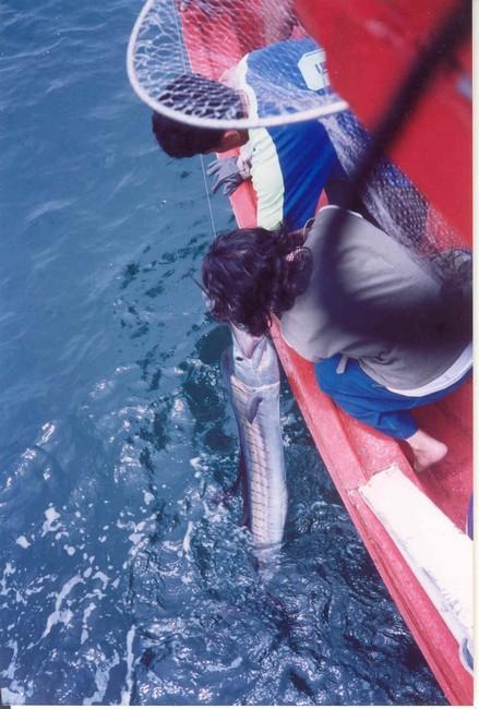 ตกปลา...กีฬาสุภาพชน