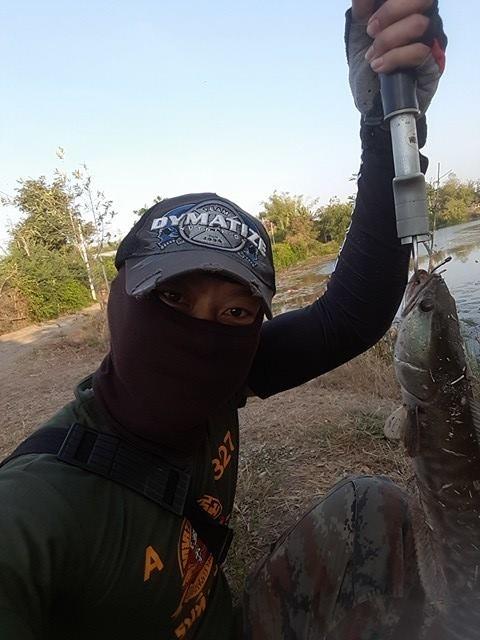 กลับไปบ้านมา...เลยนำภาพปลาชะโดมาฝาก (โคราชบ้านเอง)
