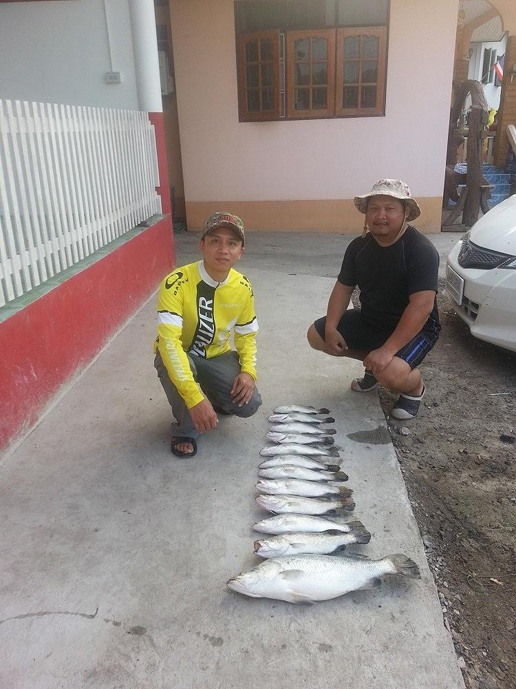 หาเพื่อนนักตกปลา สายกระพงธรรมชาติ บางปะกง