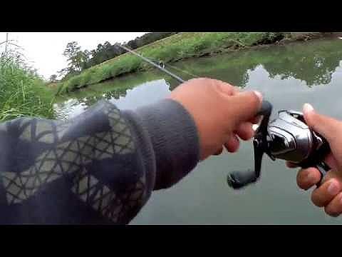 ทีมงานสายหื่น... ชื่นใจ EP.5 ล่าปลาช่อนใต้เขื่อนยาง จ.ลำปาง