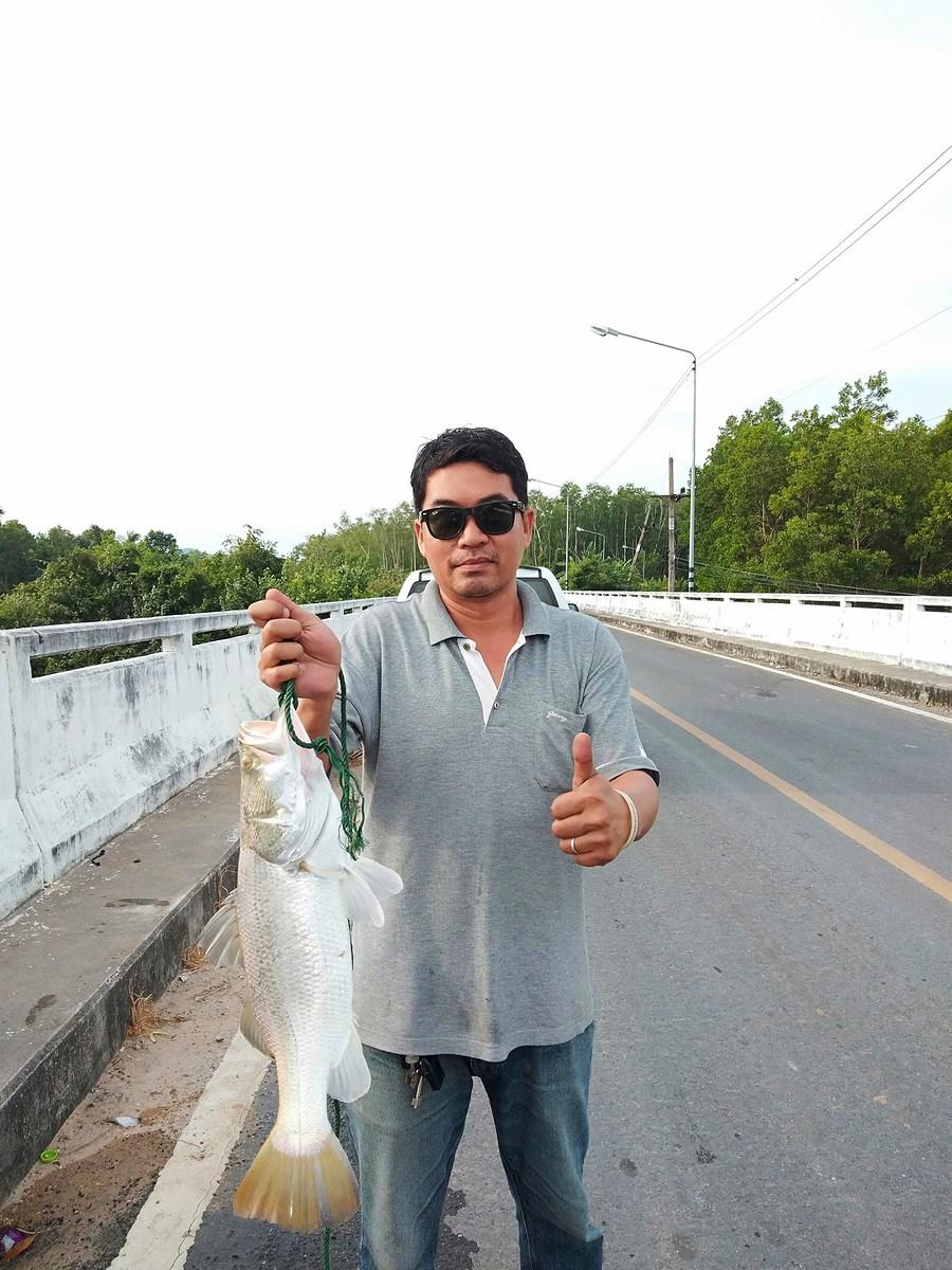 คนเฝ้าสะพานก็ต้องหากะพงเถื่อนให้เจอซินะ!